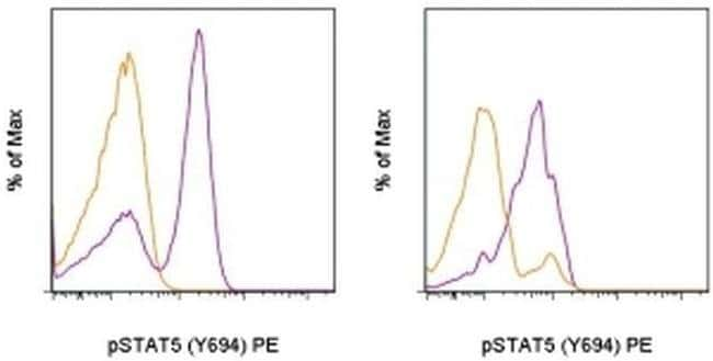 Phospho-STAT5 (Tyr694) Mouse anti-Human, Mouse, PE, Clone: SRBCZX, eBioscience™ 25 Tests; PE Phospho-STAT5 (Tyr694) Mouse anti-Human, Mouse, PE, Clone: SRBCZX, eBioscience™