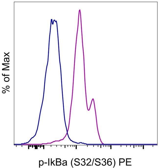 Phospho-IkB alpha (Ser32, Ser36) Mouse anti-Human, Mouse, PE, Clone: RILYB3R, eBioscience™ 100 Tests; PE Phospho-IkB alpha (Ser32, Ser36) Mouse anti-Human, Mouse, PE, Clone: RILYB3R, eBioscience™