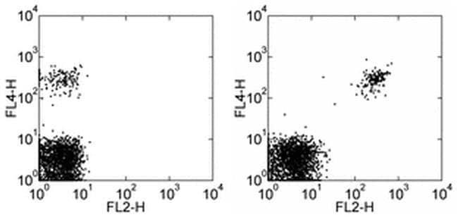CD268 (BAFF Receptor) Mouse anti-Human, PE, Clone: 8A7, eBioscience ::