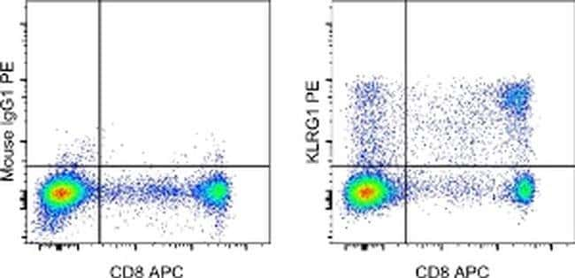 KLRG1 Mouse anti-Human, PE, Clone: 13A2, eBioscience ::