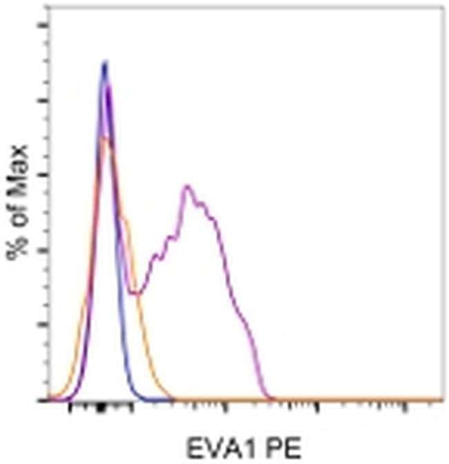EVA1, PE, clone: G9P3-1, eBioscience™ 25μg; PE EVA1, PE, clone: G9P3-1, eBioscience™