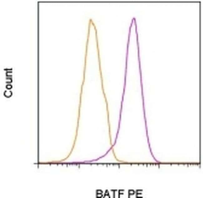 BATF Mouse anti-Human, PE, Clone: MBM7C7, eBioscience™ 100 Tests; PE BATF Mouse anti-Human, PE, Clone: MBM7C7, eBioscience™