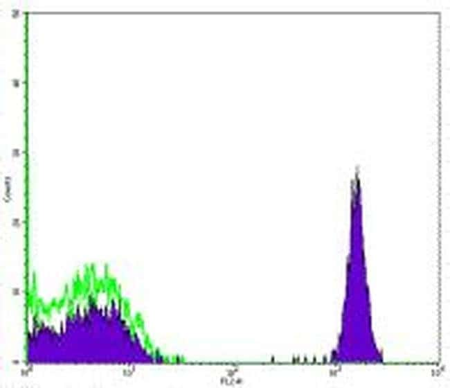 CD4 Mouse anti-Human, Biotin, Clone: RPA-T4, eBioscience  100 µg;