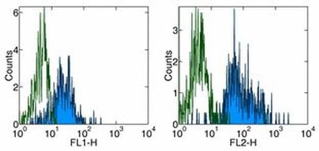 CD11c Mouse anti-Human, Biotin, Clone: 3.9, eBioscience™ 100 μg; Biotin CD11c Mouse anti-Human, Biotin, Clone: 3.9, eBioscience™