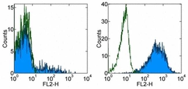 CD16 Mouse anti-Human, Biotin, Clone: eBioCB16 (CB16), eBioscience™ 25 μg; Biotin CD16 Mouse anti-Human, Biotin, Clone: eBioCB16 (CB16), eBioscience™