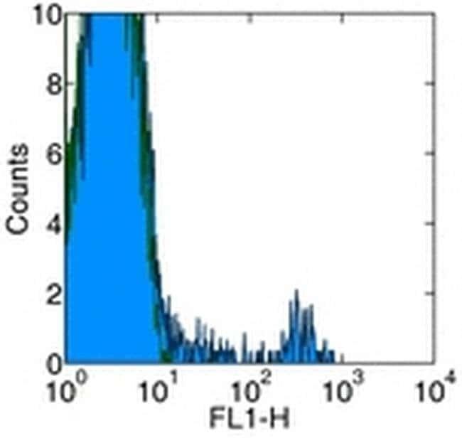 Granulocyte Marker Mouse anti-Rat, Biotin, Clone: HIS48, eBioscience Invitrogen
