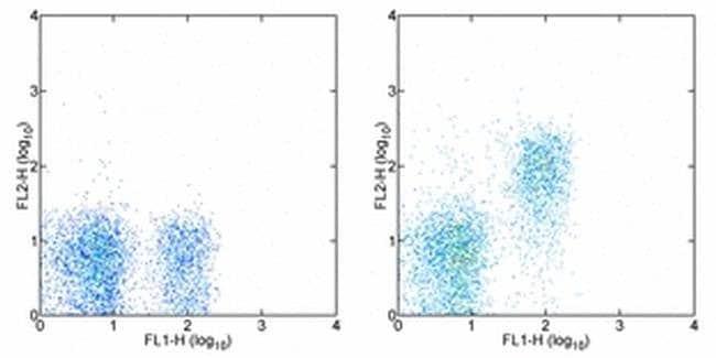 CD127 Rat anti-Mouse, Biotin, Clone: A7R34, eBioscience™ 50 μg; Biotin CD127 Rat anti-Mouse, Biotin, Clone: A7R34, eBioscience™