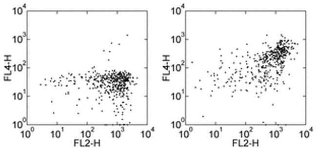 CD163 Mouse anti-Human, Biotin, Clone: eBioGHI/61 (GHI/61), eBioscience™ 100 μg; Biotin CD163 Mouse anti-Human, Biotin, Clone: eBioGHI/61 (GHI/61), eBioscience™
