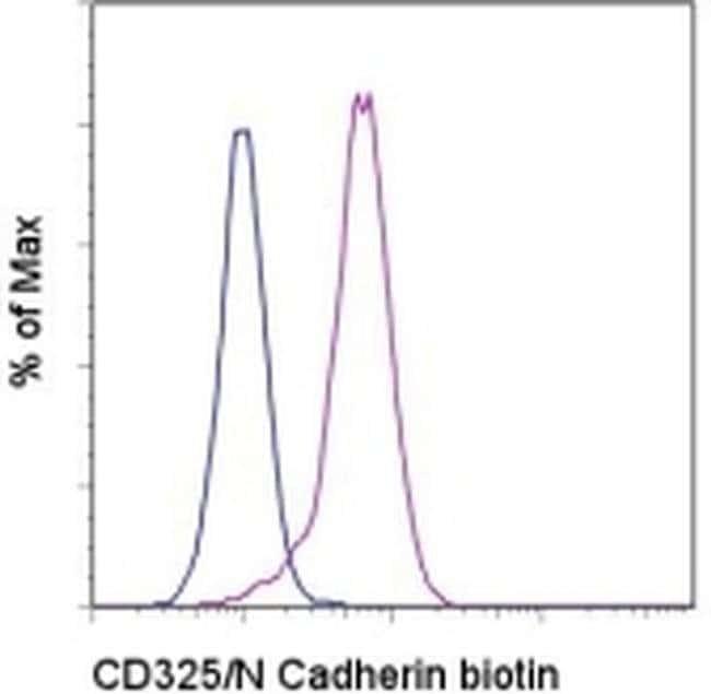CD325 (N-Cadherin) Mouse anti-Human, Biotin, Clone: 8C11, eBioscience™ 25 μg; Biotin CD325 (N-Cadherin) Mouse anti-Human, Biotin, Clone: 8C11, eBioscience™
