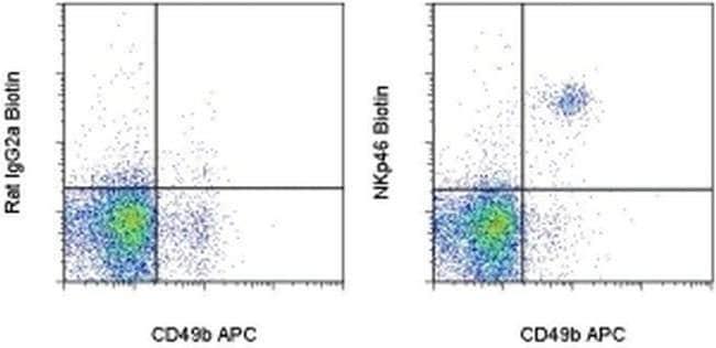 CD335 (NKp46) Rat anti-Mouse, Biotin, Clone: 29A1.4, eBioscience ::
