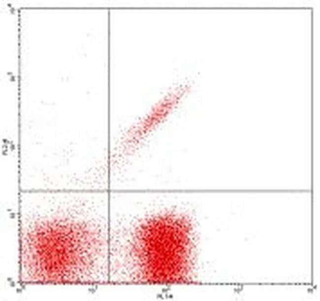 TCR gamma/delta Armenian Hamster anti-Mouse, Biotin, Clone: UC7-13D5, eBioscience