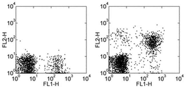 CD314 (NKG2D) Mouse anti-Human, Biotin, Clone: 1D11, eBioscience™ 100 μg; Biotin CD314 (NKG2D) Mouse anti-Human, Biotin, Clone: 1D11, eBioscience™