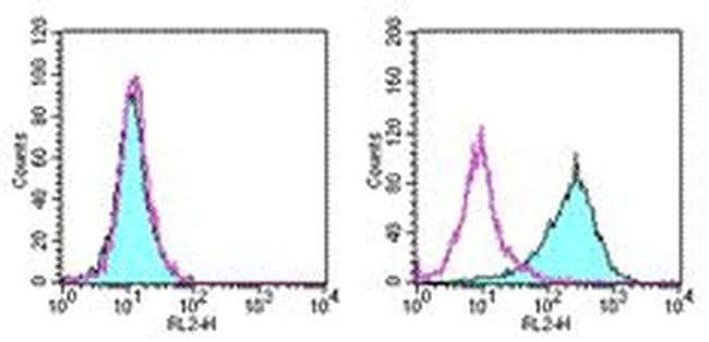 CD262 (DR5) Armenian Hamster anti-Mouse, Biotin, Clone: MD5-1, eBioscience™ 100 μg; Biotin CD262 (DR5) Armenian Hamster anti-Mouse, Biotin, Clone: MD5-1, eBioscience™