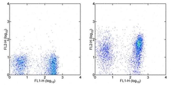 Integrin alpha 4 beta 7 (LPAM-1) Rat anti-Mouse, Biotin, Clone: DATK32 (DATK-32), eBioscience™ 100 μg; Biotin Integrin alpha 4 beta 7 (LPAM-1) Rat anti-Mouse, Biotin, Clone: DATK32 (DATK-32), eBioscience™