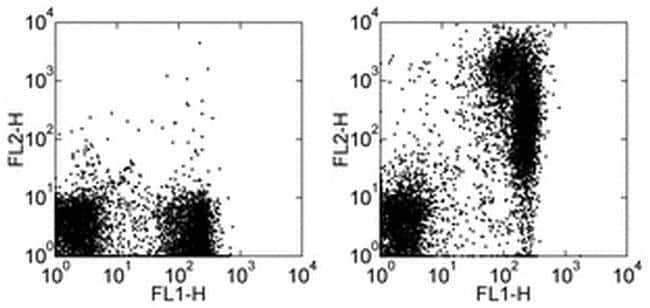 IgM Rat anti-Mouse, Biotin, Clone: eB121-15F9, eBioscience ::