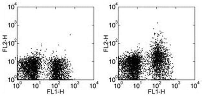 CD249 (BP-1) Rat anti-Mouse, Biotin, Clone: 6C3, eBioscience™ 500 μg; Biotin CD249 (BP-1) Rat anti-Mouse, Biotin, Clone: 6C3, eBioscience™