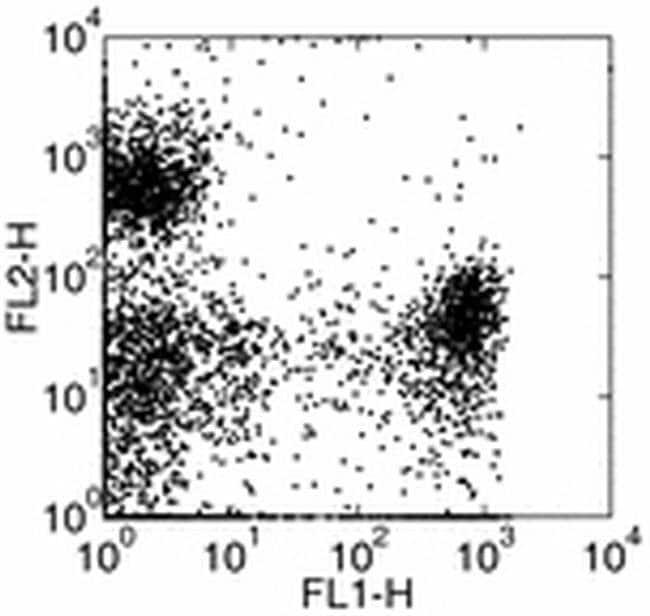 Ly-6G/Ly-6C Rat anti-Mouse, Biotin, Clone: RB6-8C5, eBioscience™ 500 μg; Biotin Ly-6G/Ly-6C Rat anti-Mouse, Biotin, Clone: RB6-8C5, eBioscience™