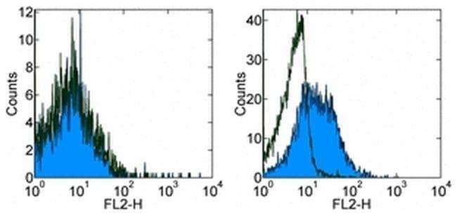 CD254 (RANK Ligand) Rat anti-Mouse, Biotin, Clone: IK22/5, eBioscience™ 50 μg; Biotin CD254 (RANK Ligand) Rat anti-Mouse, Biotin, Clone: IK22/5, eBioscience™
