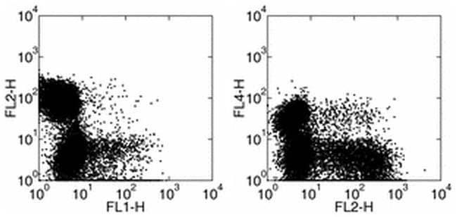 IFN gamma Rat anti-Mouse, Biotin, Clone: XMG1.2, eBioscience™ 500 μg; Biotin IFN gamma Rat anti-Mouse, Biotin, Clone: XMG1.2, eBioscience™