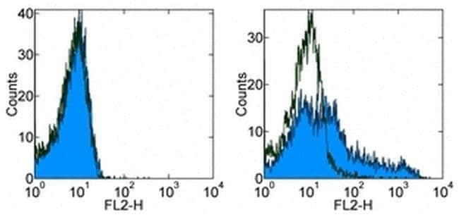 CD278 (ICOS) Mouse anti-Human, Biotin, Clone: ISA-3, eBioscience™ 100 μg; Biotin CD278 (ICOS) Mouse anti-Human, Biotin, Clone: ISA-3, eBioscience™