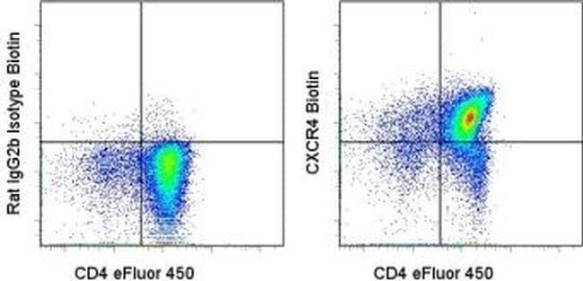 CD184 (CXCR4) Rat anti-Mouse, Biotin, Clone: 2B11, eBioscience™ 100 μg; Biotin CD184 (CXCR4) Rat anti-Mouse, Biotin, Clone: 2B11, eBioscience™