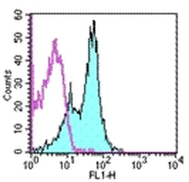 CD1d Rat anti-Mouse, Clone: 1B1, eBioscience  50 µg; Unconjugated