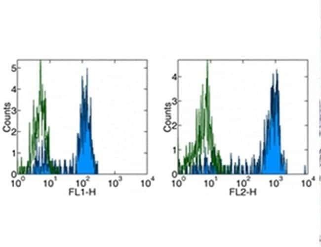 CD14 Mouse anti-Human, Clone: 61D3, eBioscience™ 100 μg; Unconjugated CD14 Mouse anti-Human, Clone: 61D3, eBioscience™