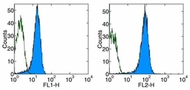 CD31 (PECAM-1) Rat anti-Mouse, Clone: 390, eBioscience™ 100 μg; Unconjugated CD31 (PECAM-1) Rat anti-Mouse, Clone: 390, eBioscience™