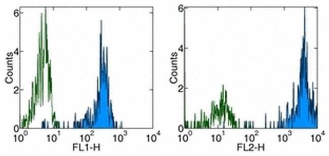 CD31 (PECAM-1) Mouse anti-Human, Clone: WM-59 (WM59), eBioscience™ 25 μg; Unconjugated CD31 (PECAM-1) Mouse anti-Human, Clone: WM-59 (WM59), eBioscience™