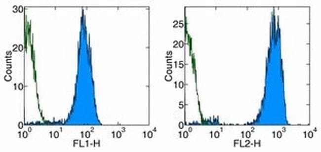 CD42b Mouse anti-Human, Clone: HIP1, eBioscience ::