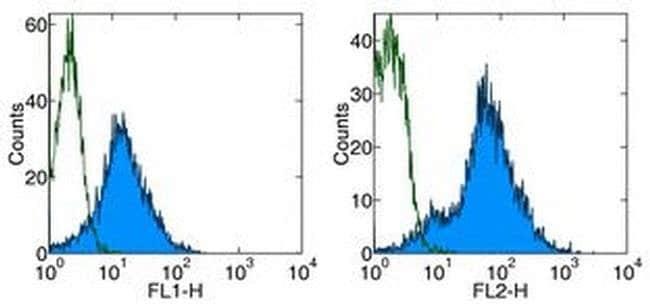 CD54 (ICAM-1) Rat anti-Mouse, Clone: YN1/1.7.4, eBioscience™ 500 μg; Unconjugated CD54 (ICAM-1) Rat anti-Mouse, Clone: YN1/1.7.4, eBioscience™