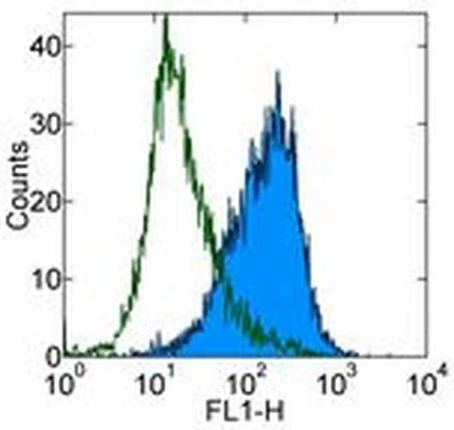 CD86 (B7-2) Rat anti-Mouse, Clone: GL1, eBioscience™ 100 μg; Unconjugated CD86 (B7-2) Rat anti-Mouse, Clone: GL1, eBioscience™