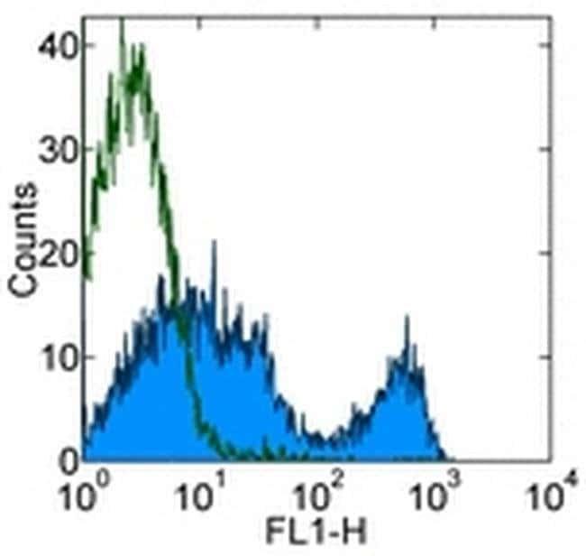 CD90.2 (Thy-1.2) Rat anti-Mouse, Clone: 30-H12, eBioscience ::