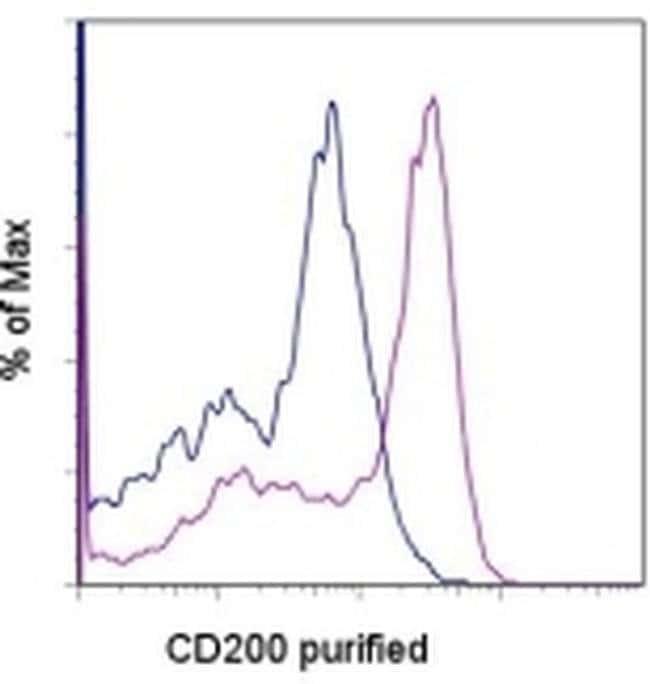 CD200 Rat anti-Mouse, Clone: OX90, eBioscience™ 25 μg; Unconjugated CD200 Rat anti-Mouse, Clone: OX90, eBioscience™