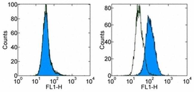 CD366 (TIM3) Rat anti-Mouse, Clone: 8B.2C12, eBioscience™ 50 μg; Unconjugated CD366 (TIM3) Rat anti-Mouse, Clone: 8B.2C12, eBioscience™