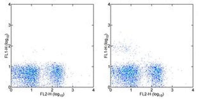 NK1.1 Mouse anti-Mouse, Clone: PK136, eBioscience™ 50 μg; Unconjugated NK1.1 Mouse anti-Mouse, Clone: PK136, eBioscience™
