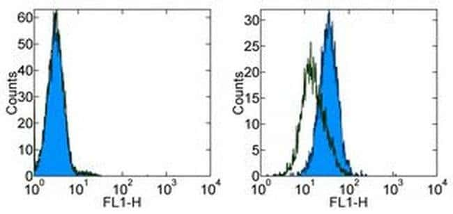 CD254 (RANK Ligand) Mouse anti-Human, Clone: MIH24, eBioscience™ 100 μg; Unconjugated CD254 (RANK Ligand) Mouse anti-Human, Clone: MIH24, eBioscience™
