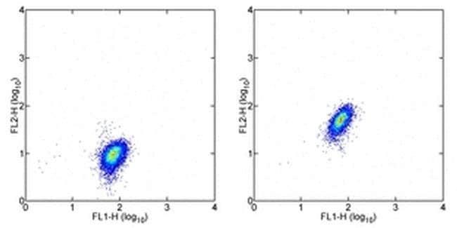 c-Met Rat anti-Human, Clone: eBioclone 97, eBioscience™ 100 μg; Unconjugated c-Met Rat anti-Human, Clone: eBioclone 97, eBioscience™