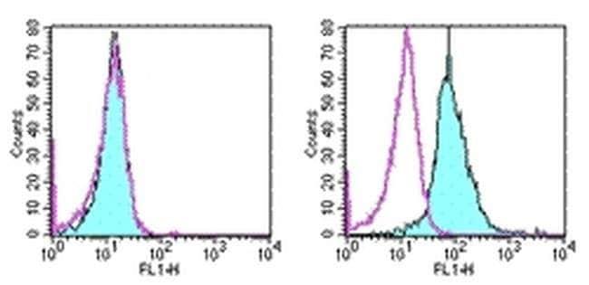 CD266 (TWEAK Receptor) Mouse anti-Human, Mouse, Clone: ITEM-4, eBioscience™ 100μg; Unconjugated CD266 (TWEAK Receptor) Mouse anti-Human, Mouse, Clone: ITEM-4, eBioscience™