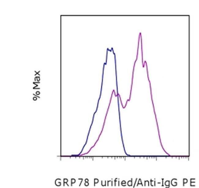 GRP78 Mouse anti-Human, Clone: C38, eBioscience ::