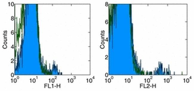 TCR gamma/delta Mouse anti-Human, Clone: B1.1, eBioscience™ 100 μg; Unconjugated TCR gamma/delta Mouse anti-Human, Clone: B1.1, eBioscience™