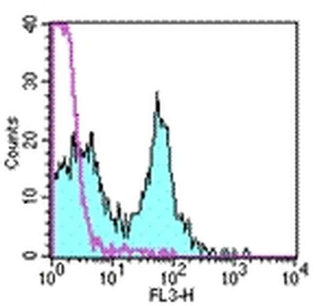 CD40 Rat anti-Mouse, PE-Cyanine5, Clone: 1C10, eBioscience ::