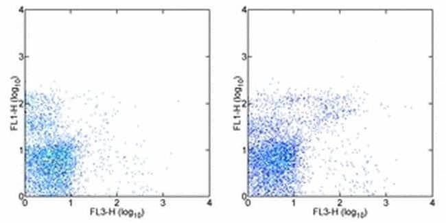 IgM Rat anti-Mouse, PE-Cyanine5, Clone: II/41, eBioscience  50 µg;