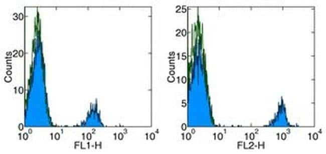 CD19 Mouse anti-Human, Functional Grade, Clone: HIB19, eBioscience  500