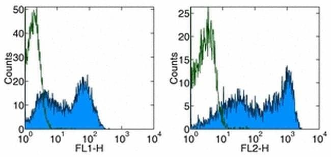 CD62L (L-Selectin) Rat anti-Mouse, Functional Grade, Clone: MEL-14, eBioscience