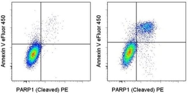 CD95 (APO-1/Fas) Mouse anti-Human, Functional Grade, Clone: EOS9.1, eBioscience™ 50 μg; Functional Grade CD95 (APO-1/Fas) Mouse anti-Human, Functional Grade, Clone: EOS9.1, eBioscience™