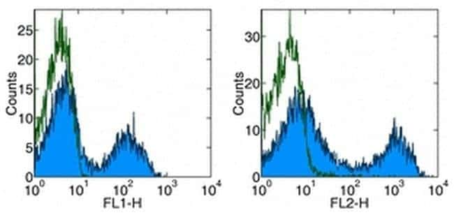 CD5 Rat anti-Mouse, APC, Clone: 53-7.3, eBioscience ::