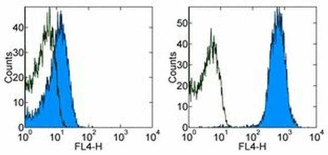 CD45.1 Mouse anti-Mouse, APC, Clone: A20, eBioscience ::