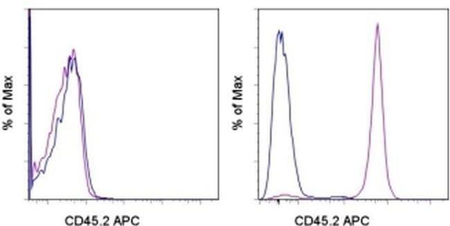 CD45.2 Mouse anti-Mouse, APC, Clone: 104, eBioscience ::