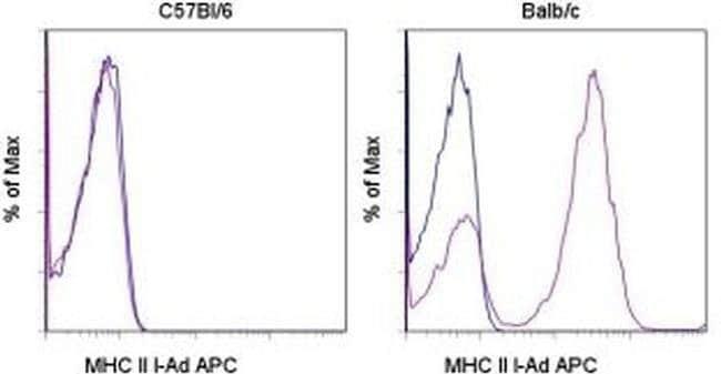 MHC Class II I-Ad Mouse anti-Mouse, APC, Clone: AMS-32.1, eBioscience™ 100μg; APC MHC Class II I-Ad Mouse anti-Mouse, APC, Clone: AMS-32.1, eBioscience™